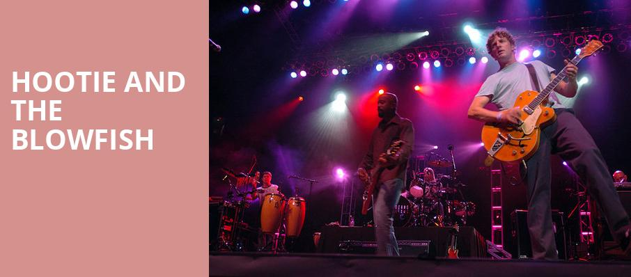 Hootie And The Fish Perfect Vodka Amphitheatre West Palm Beach Fl Tickets Information Reviews